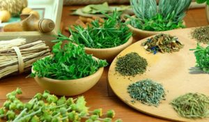 ervas alimentos alcalinos