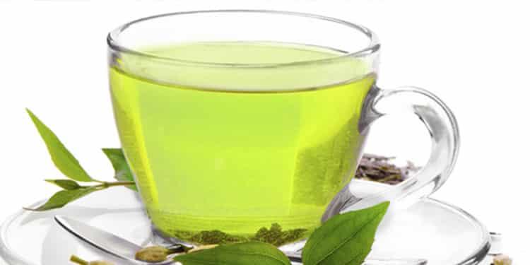emagrecer o chá verde