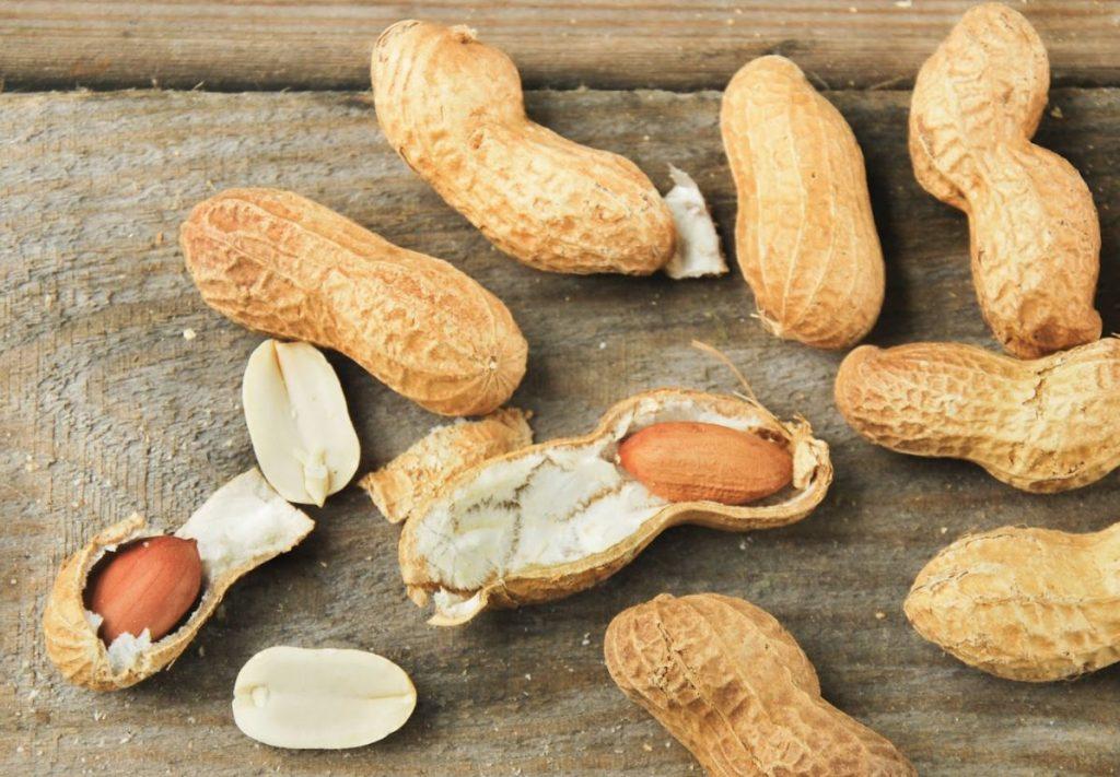 alimentos ricos em proteínas amendoim