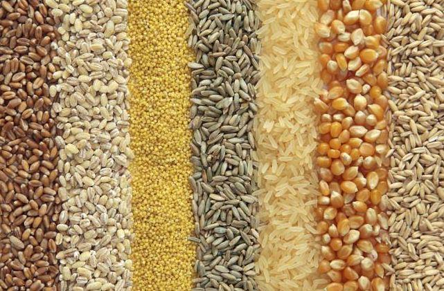 alimentos ricos em proteínas de cereais