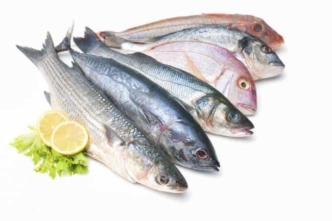 que alimentos são proteínas de peixe
